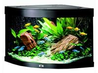 Et godt akvarium fra Juwel (foto: lavprisdyrehandel.dk)